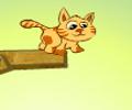 توصيل قطط