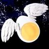 البيضة الطائرة