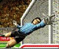 فيفا كأس العالم